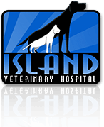 Island Veterinary Hospital in Richmond logo
